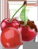 Perle de fruit